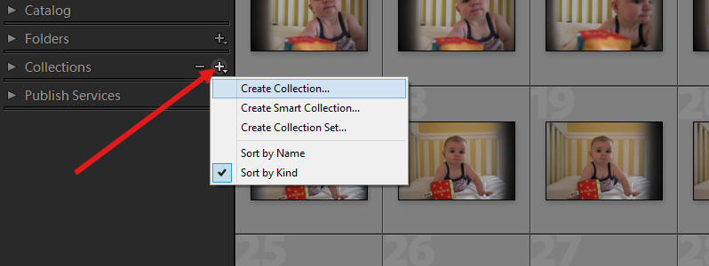 How to Create and Manage Catalogs and Collections in Lightroom