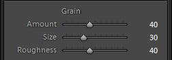 Làm thế nào để tạo một hiệu ứng Matlab Grainy trong Lightroom