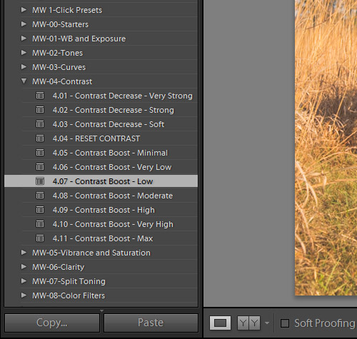 How to Create Your Own Lightroom Presets Using the Master Workflow System