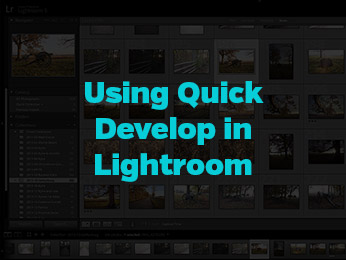 Using Quick Develop in Lightroom