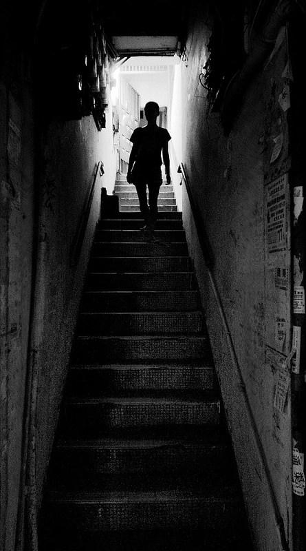 Backlit Photography