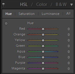 Introduction to the HSL Settings in Lightroom