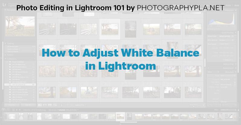 How to Adjust White Balance in Lightroom