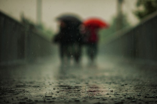 22 Outstanding Photos in the Rain