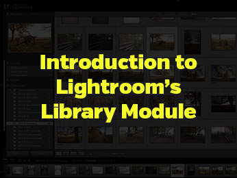 Introduction to Lightroom's Library Module