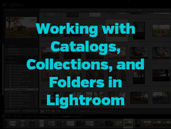 Working with Catalogs, Collections, and Folders in Lightroom