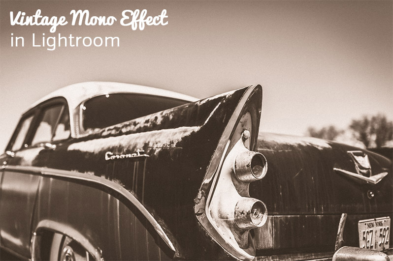 How to Create a Vintage Monochrome Look in Lightroom